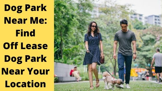 find dog park near your location