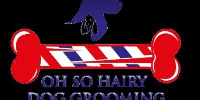Oh So Hairy Dog Grooming london