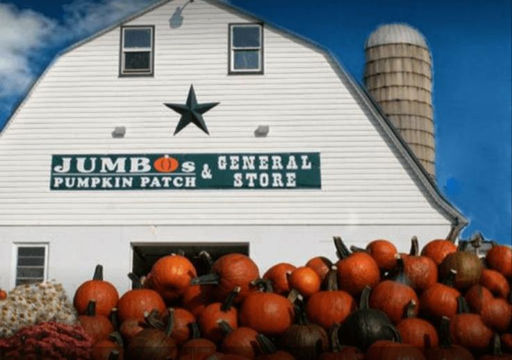 Jumbos Pumpkin Patch